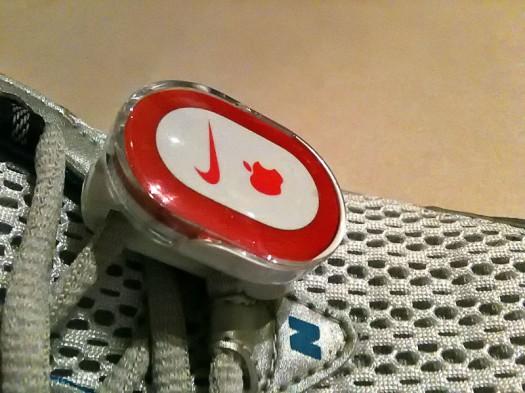 Sensor holder