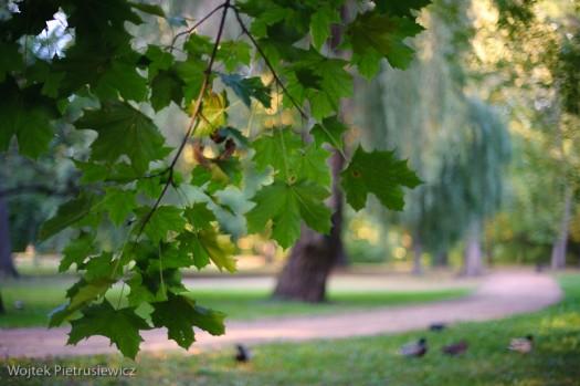 Nadchodzi jesień ...