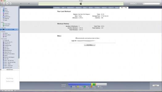iTunes Nike iPod