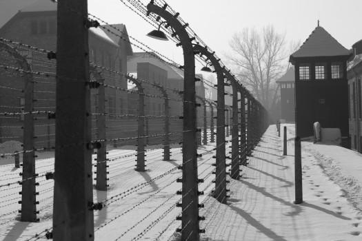 Drut kolczasty | fot. Wojtek Pietrusiewicz | photography.moridin.pl