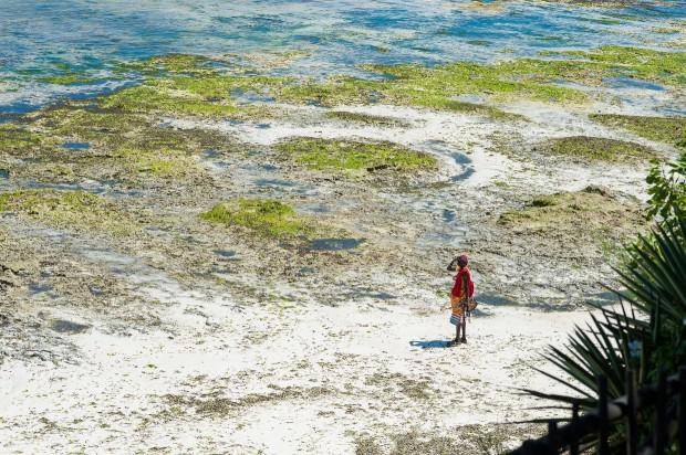 Masajowie na plaży