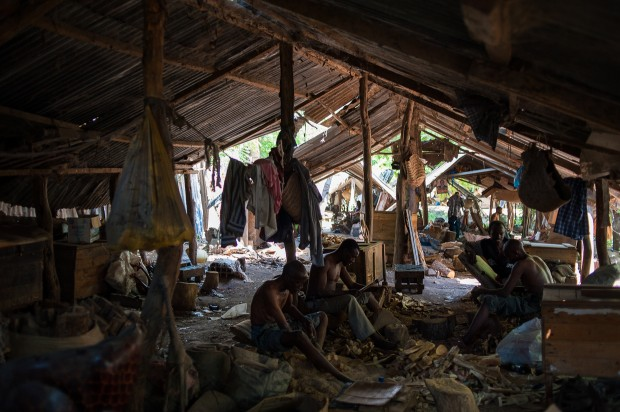 Plemię Akamba