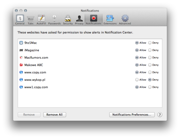Safari Notifications Preferences