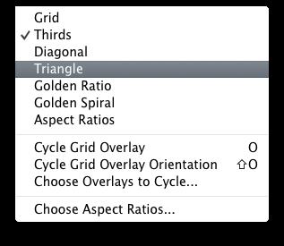 Lightroom Golden Spiral overlay crop tool options