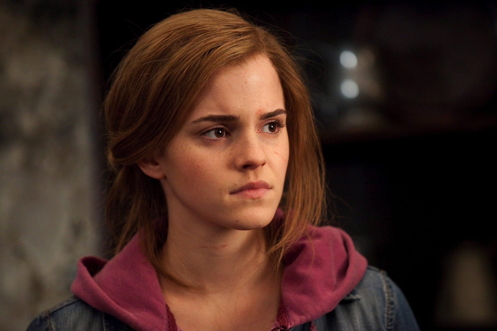 Harry-Potter-Hermione-Granger-hero
