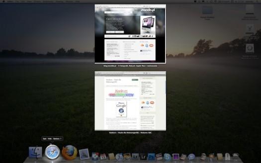 OS X Expose 10.6