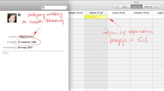 iCal and Address Book - birthday